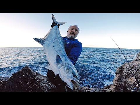 Dentex & BIG Leerfish | Shore Jigging Between The Storms