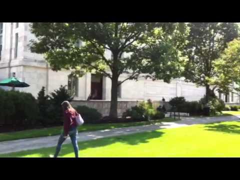 Facultad de Medicina de Harvard - YouTube