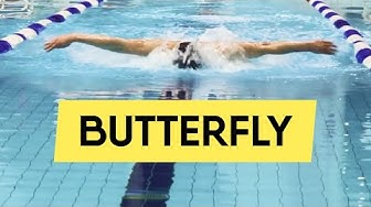 BUTTERFLY SWIMMING: MOST USEFUL TIPS (For 2020)