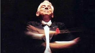 """Beethoven """"String Quartet op 131 arr.f.String-orch."""" L.Bernstein"""