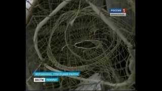 Житель Плесецкого района сохраняет традиции рыбаков(Сегодня, вязка рыболовных сетей - это уходящее ремесло северных крестьян. Как это делали ещё столетия назад..., 2014-03-30T14:04:50.000Z)