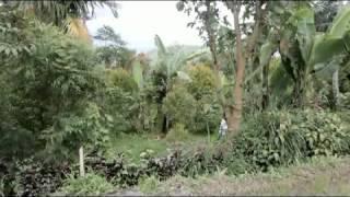 Saluang Pa Ambuih Tungku (seruas peniup tungku) Mp3