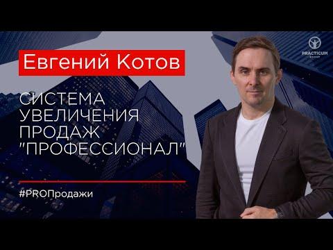 "Система Евгения Котова по продажам ""ПРОФЕССИОНАЛ"""