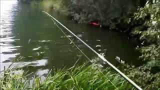 вся суть рыбалки в плохую погоду  23 08 15