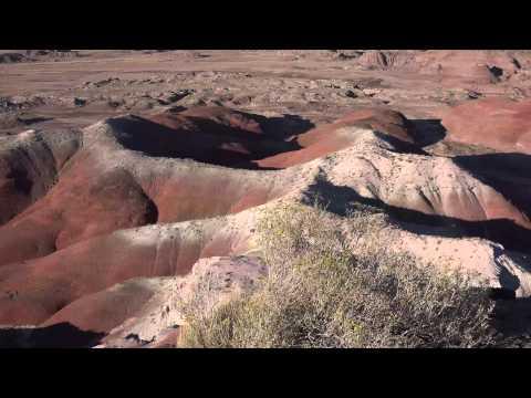 4K Petrified Forest National Park Arizona