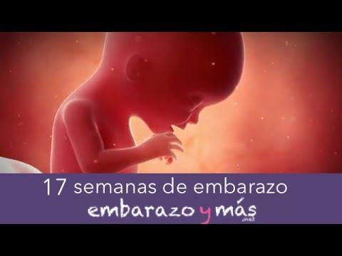 619076e95 14 semanas de embarazo - Cuarto mes - EMBARAZOYMAS - YouTube