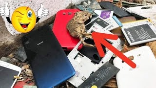 Restoration destroyed abandoned phone | Rebuild broken phone Samsung