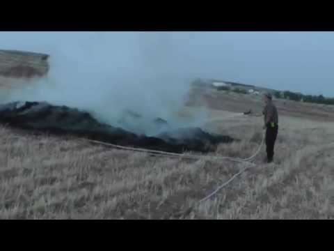 Palestinian crops set on fire, South Hebron hills 22.5.5.14