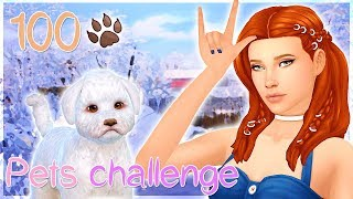 [LIVE STREAM] // THE SIMS 4 : 100 PETS CHALLENGE #13 🐾