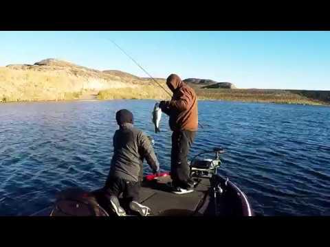 Pre fishing diamond valley lake for nbw dec 3rd 2016 for Diamond valley fishing report