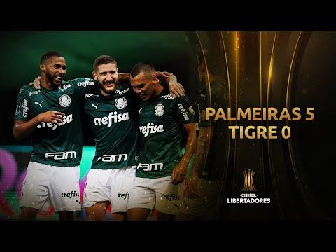 Palmeiras Tigre Goals And Highlights
