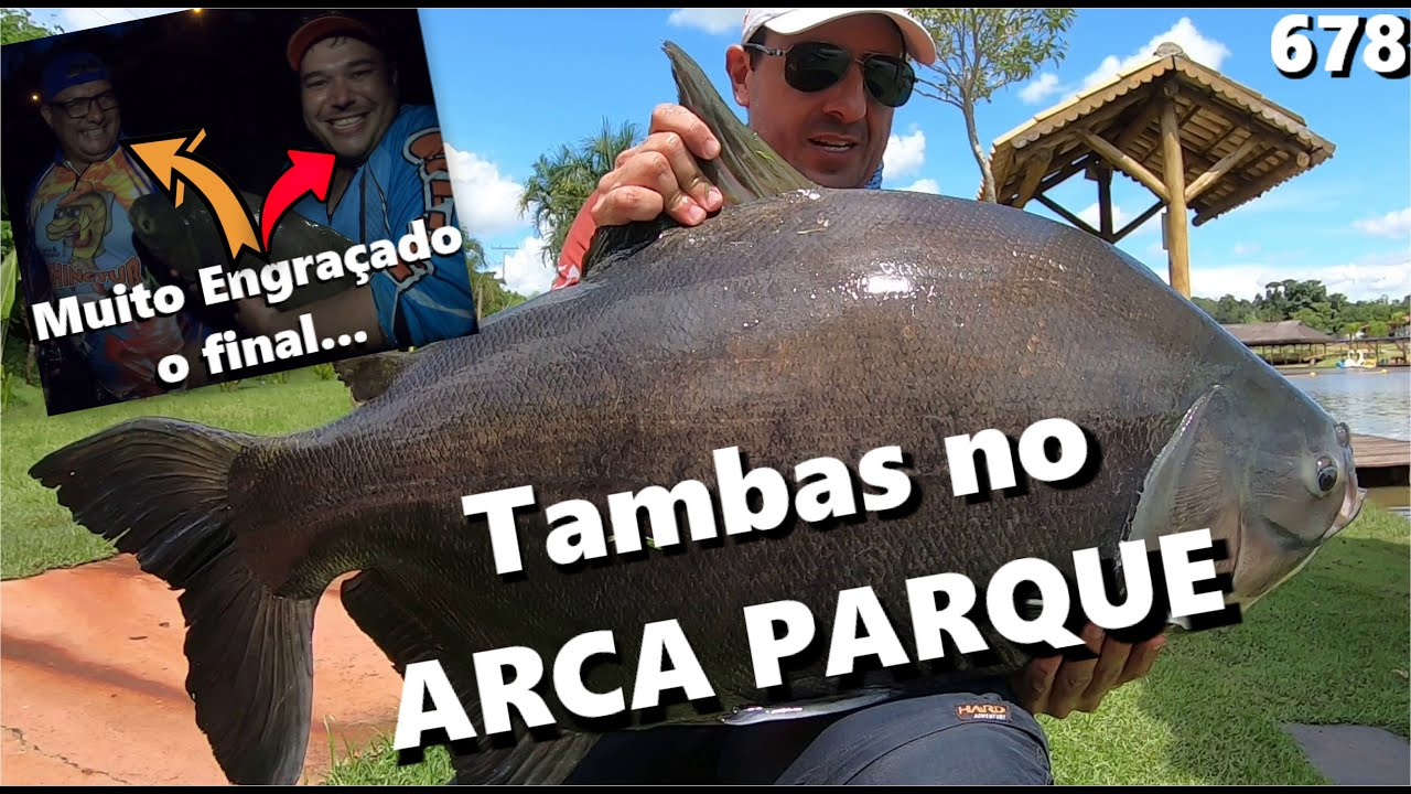 Pescaria com os grandes Tambas do Arca Parque - Fishingtur #678