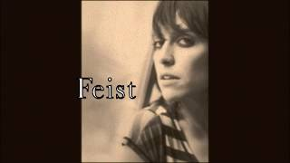 Feist - Limit To Your Love (Live)