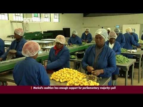 Agriculture Creating The Much Needed Employment In Swaziland