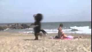 приколы на пляже