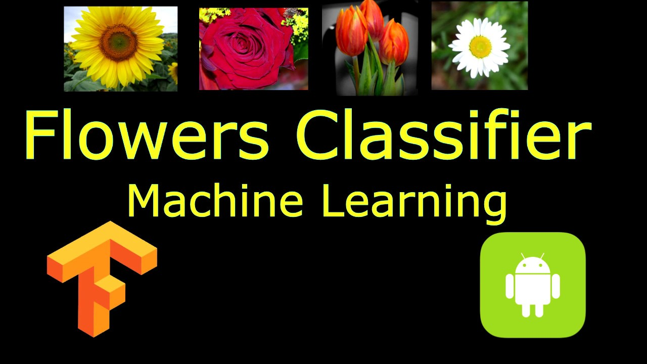 Classify Flower with Android Machine Learning TensorFlow