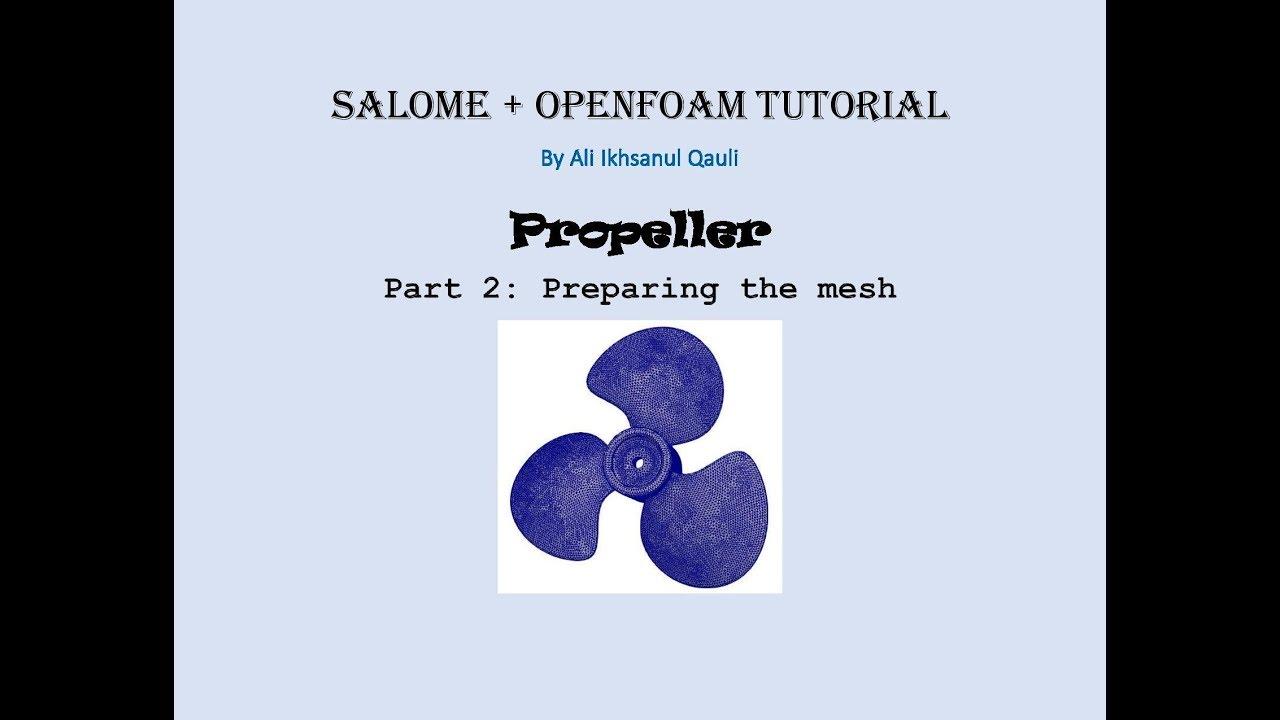 SALOME & OpenFOAM Tutorial: Propeller - Preparing The Mesh