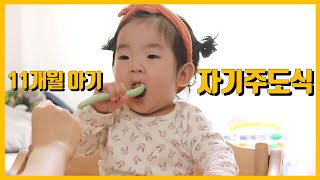 11개월 아기는 뭐먹지? 자기주도식 / 자기주도이유식 …