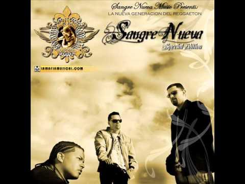 Naldo, Yomo, Tomy Viera, Arcangel & De La Ghetto, Nengo Flow   Intro (Sangre Nueva Special Edition)
