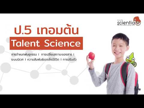 คอร์ส เรียนออนไลน์ วิทยาศาสตร์ ชุดการทดลองจัดเต็ม สำหรับ ป.5 l Scientia
