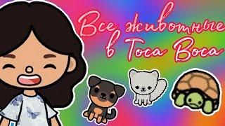 |•Все животные в Toca Boca life•|