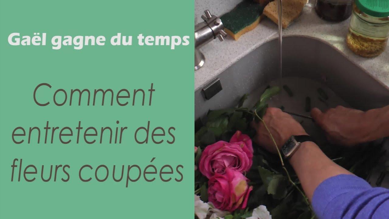 Comment Faire Secher Une Rose Fraiche comment garder des fleurs fraiches - gaël gagne du temps