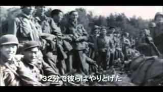 442日系部隊 アメリカ史上最強の陸軍 動画 dvd tsutaya ツタヤ