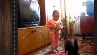 Борьба Мамы-Кошки за котенка!Супер Прикольные Смешные Животные! Лови улыбку)  Угарный ржач!