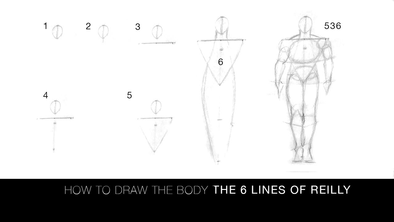 Line Drawing Method : Videos frank reilly trailers photos
