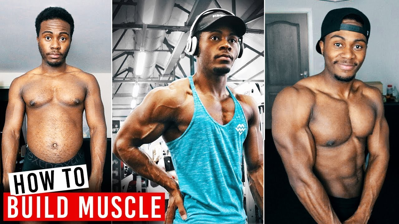 How to Start Weight Training To Build Muscle | Complete Beginners Guide