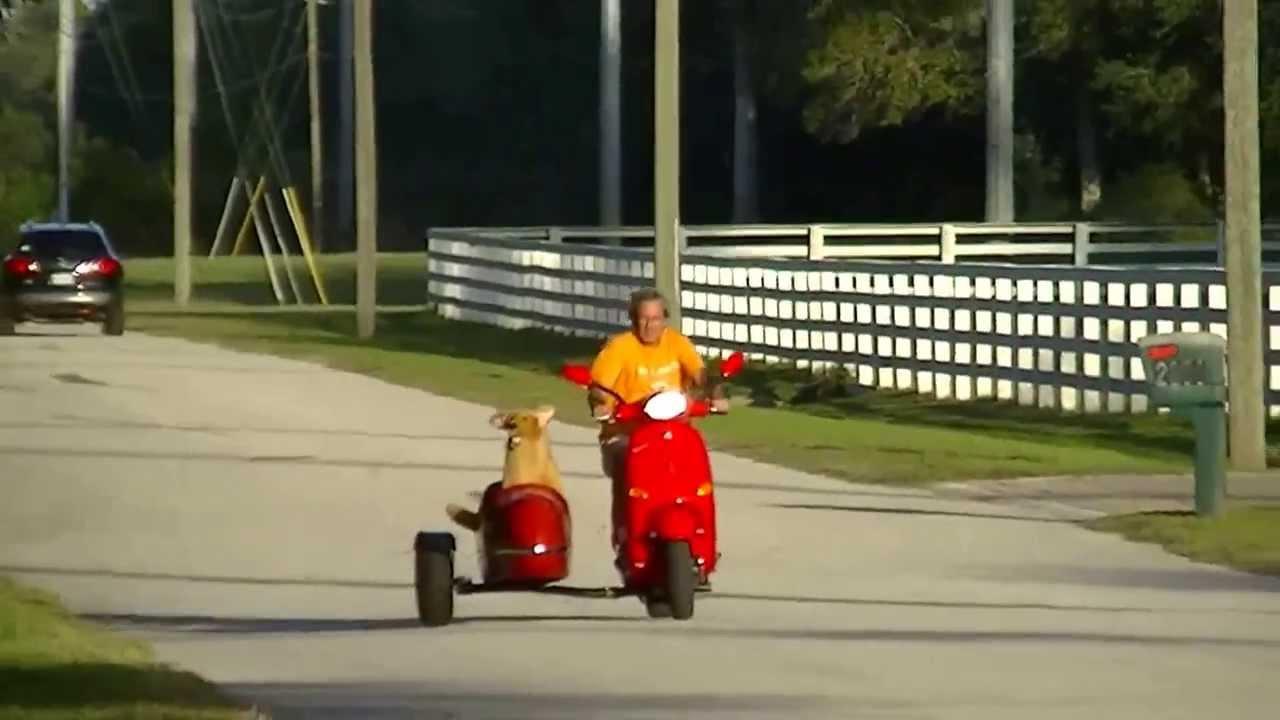Keltic Sidecar On A Modern Vespa 50cc Youtube