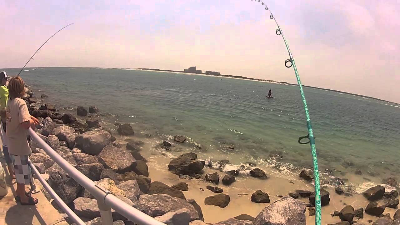 Fishing the ponce inlet for flounder and mangrove snapper for Ponce inlet fishing