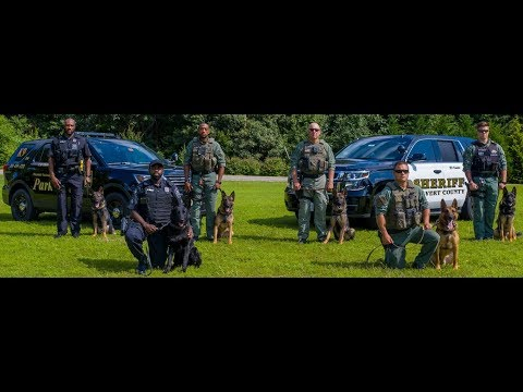 CCSO K9 Patrol School 2019