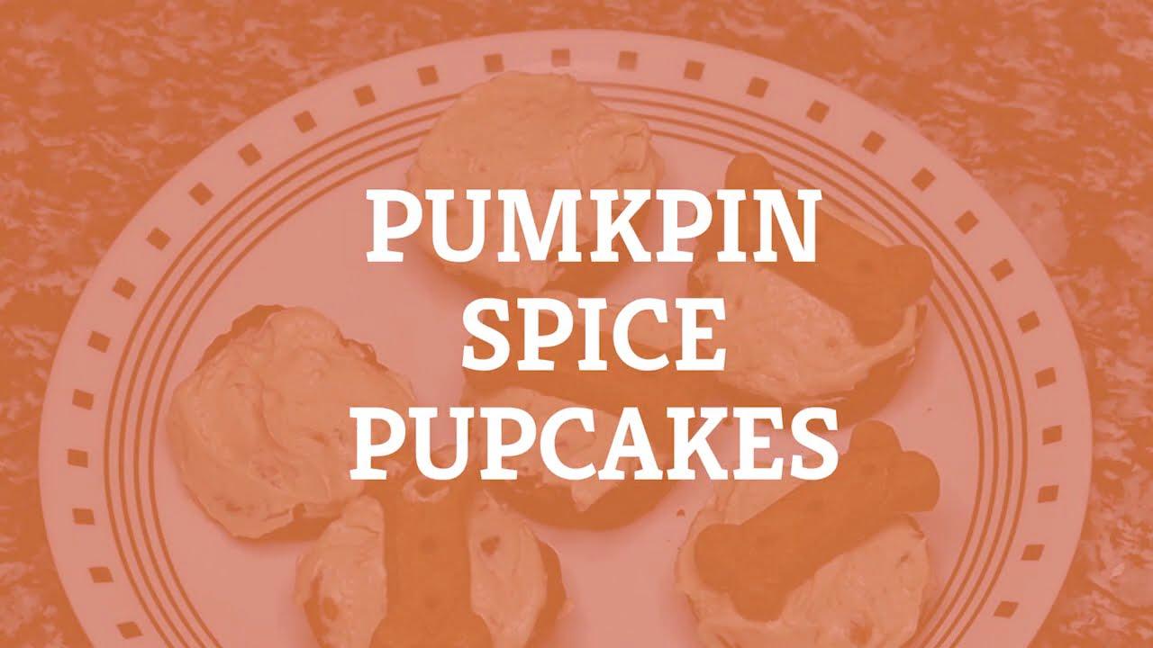 Pumpkin Spice Pupcakes