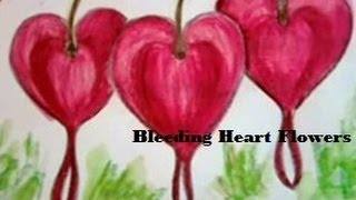 How To Draw A Bleeding Heart Flower and color them colour