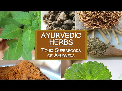 Ayurvedic Herbs, The Tonic Superfoods of Ayurveda