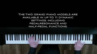 V3 Grand Piano XXL - Piano Sound 000 Vienna - played forte