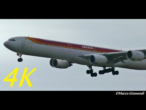 Iberia A340-600 lands at Rome Fiumicino Airport