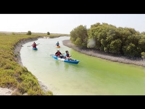 #QatarEvents: Kayaking To Nature At Qatar's Al Thakira Mangroves