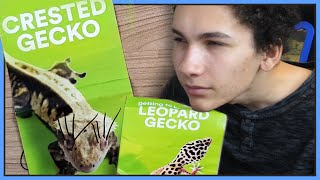 Reviewing PetSmart's Gecko Care Guides (Vet Approved!)