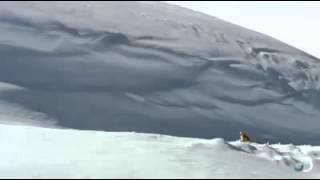 شاهد كيف يحصل الثعلب على طعامه في الثلج!!!