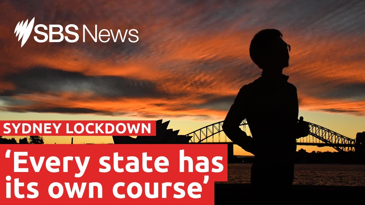NSW records 172 local COVID-19 cases | SBS News