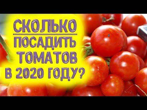 Сколько посадить помидоров, огурцов, перца и баклажанов в 2020 г., чтобы хватило семье из 6 человек