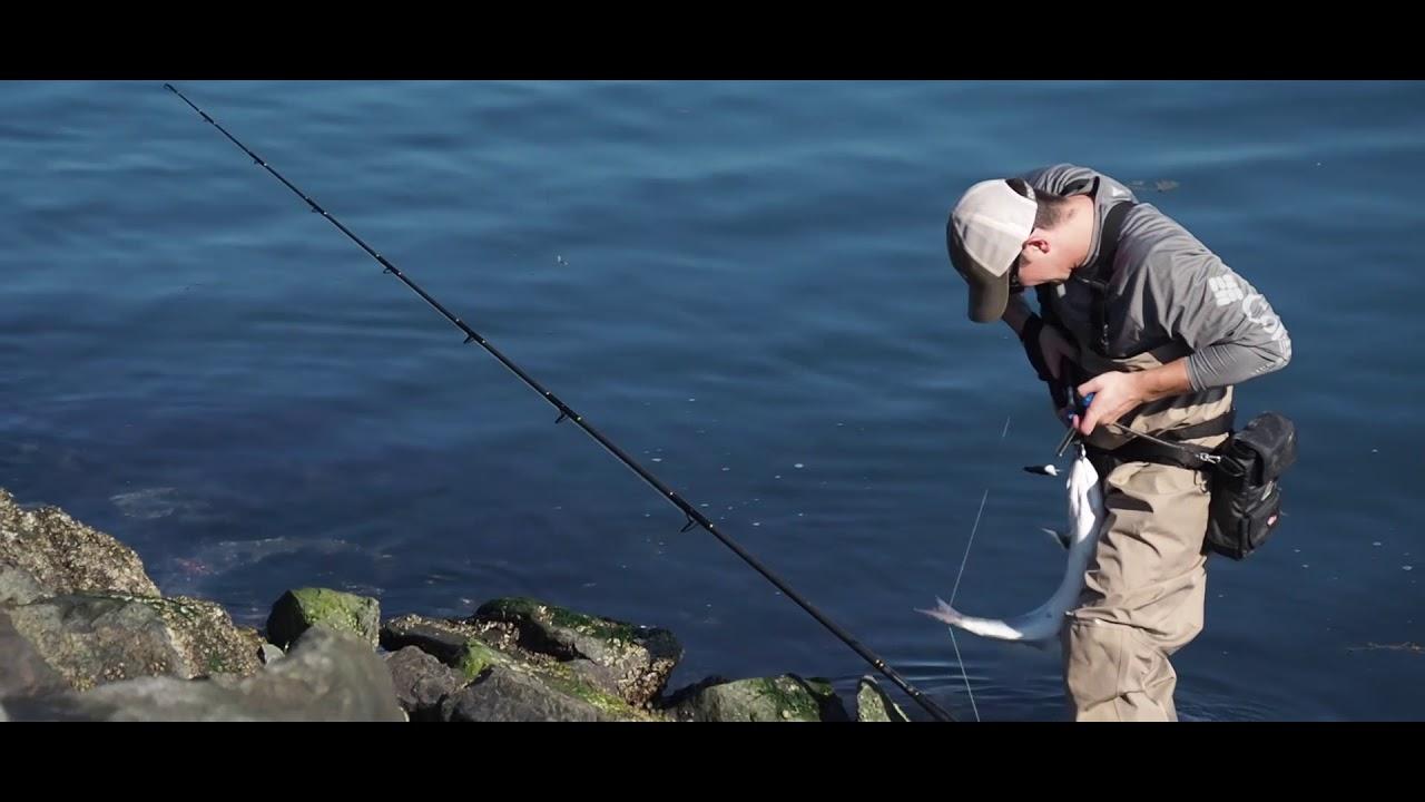 Crazy cape cod canal striper blue fish and albie blitz for Striper fishing cape cod