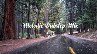 The Best Melodic Dubstep Mix # 3 (W.E.M.N)