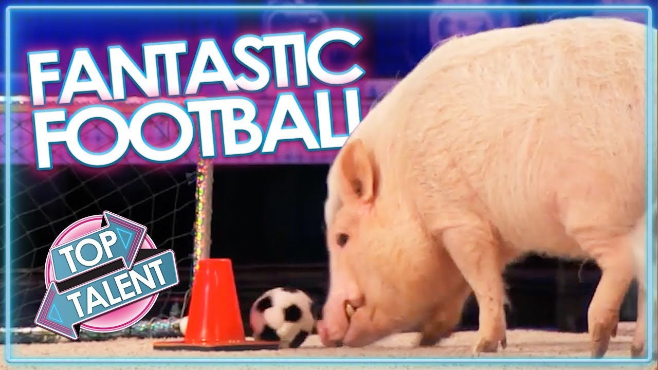 FANTASTIC FOOTBALL Acts on Got Talent! | Top Talent