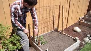 Cheap And Easy Trellises For The Home Garden