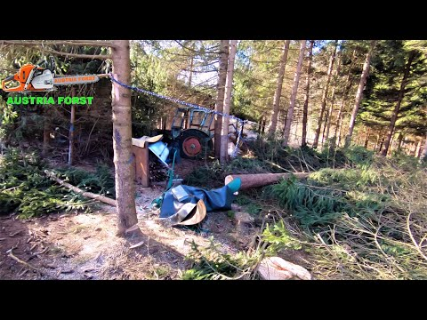Will the good old plow survive? from YouTube · Duration:  13 minutes 12 seconds
