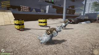 Raccoon stealing different items to build a base II Wanted Raccoon