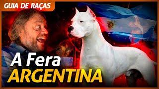 DOGO ARGENTINO, A FERA DOS HERMANOS! | RICHARD RASMUSSEN